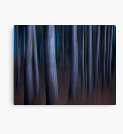 Still Too Early Canvas Print
