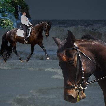 Dressage on the Beach by aboveparr