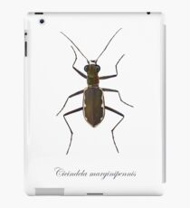 Cobblestone tiger beetle, Cicindela marginipennis iPad Case/Skin