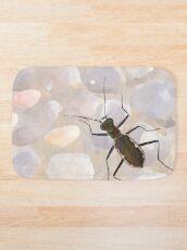 Cobblestone tiger beetle, Cicindela marginipennis Bath Mat