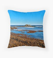 The Hawk Beach IV Throw Pillow