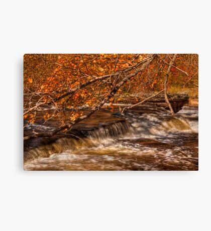 Autumn at Shohola Falls Canvas Print