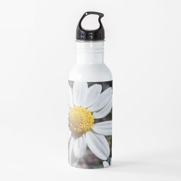 Mayweed wildflower Water Bottle