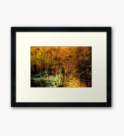 Elizabeth's Lake Framed Print