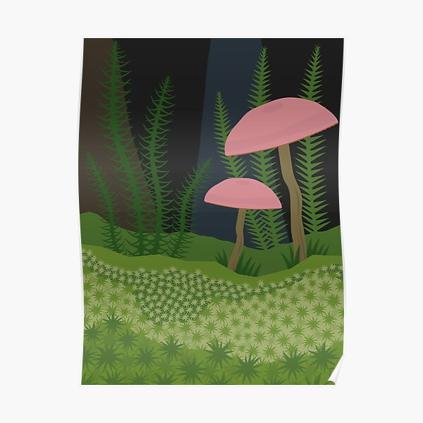 Mushrooms and Moss Poster