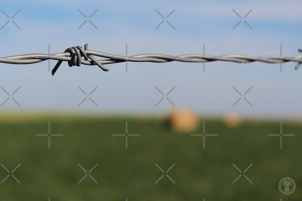 Barbed Wire Fence by madeinsask