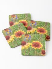 Blanket Flower Wildflowers Coasters