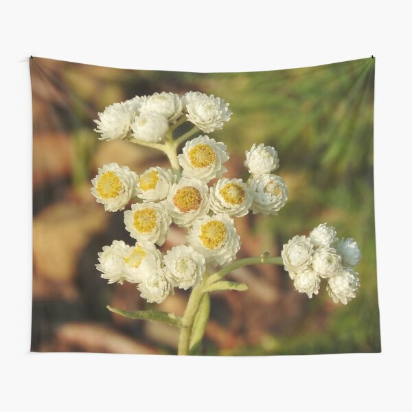 Pearly Everlasting Wildflowers Tapestry