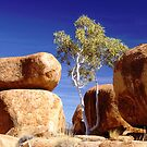 devils marbles by snapper