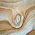 rockform detail by snapper