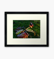 A Touch Of Frost Framed Print