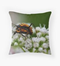 """"""" A Little Privacy Please . . . """" Throw Pillow"""