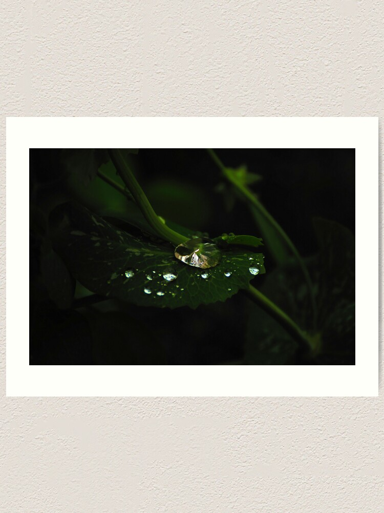 Alternate view of Water and Green Art Print