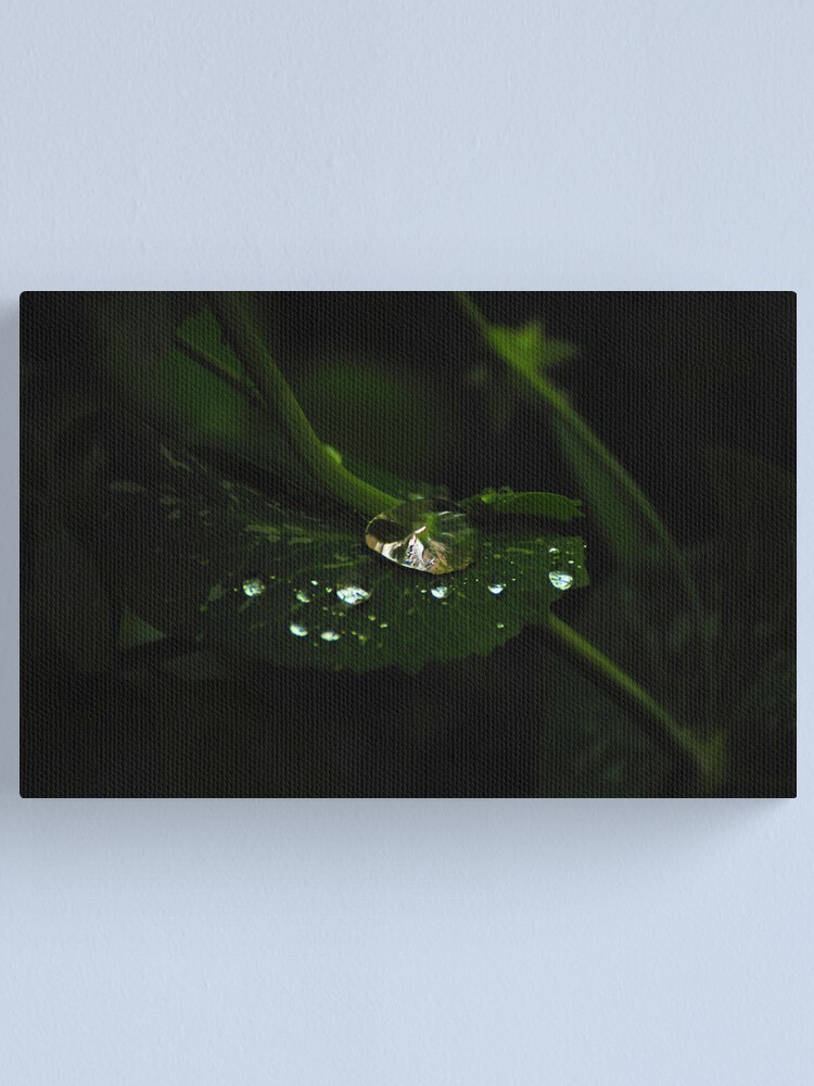 Alternate view of Water and Green Canvas Print