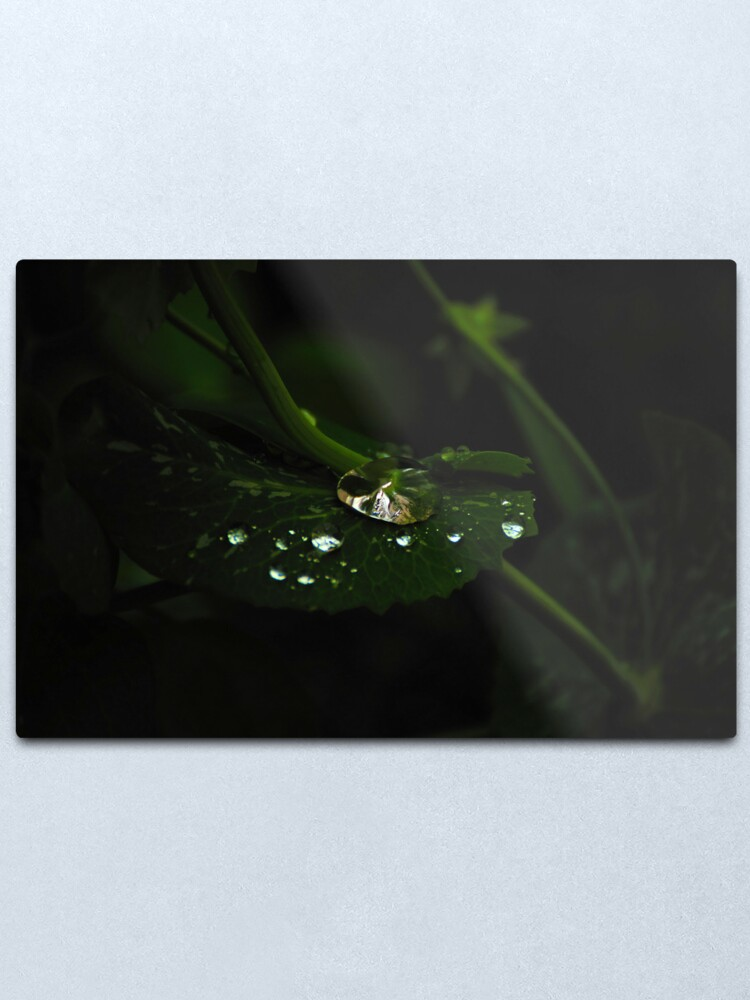 Alternate view of Water and Green Metal Print