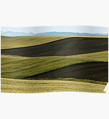 Fileds Of Grain Poster