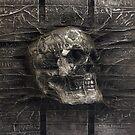 Karbon Kast Skull by truaxdesigns