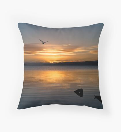 Soaring into the night Throw Pillow