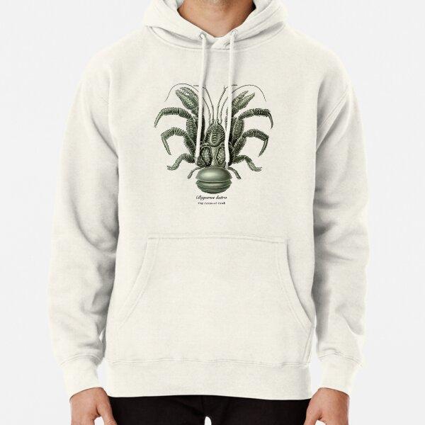 The coconut crab, Birgus latro. Pullover Hoodie