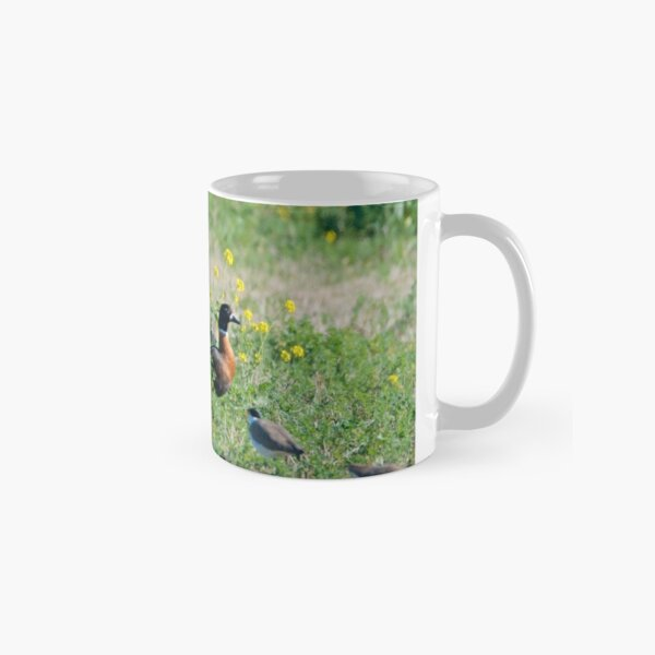Shelduck, Pied Oystercatcher, Wattled Lapwing Classic Mug