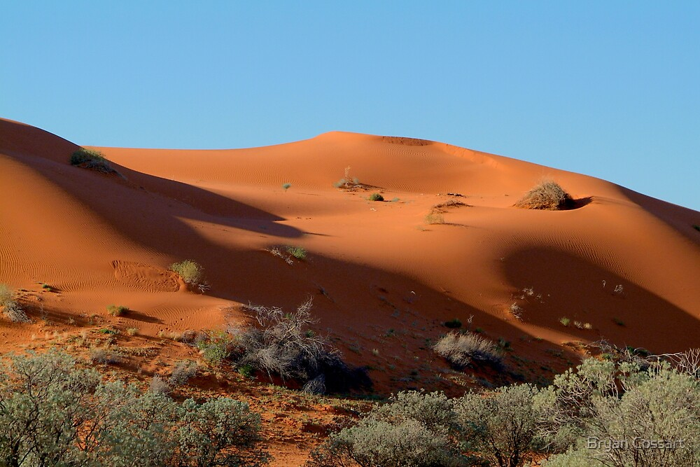 Perfect dune by Bryan Cossart