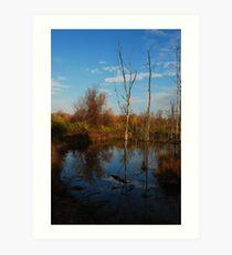 """Marsh Reflections"" Art Print"