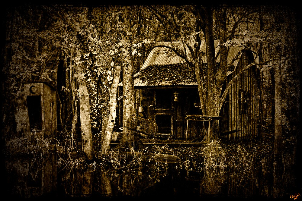 Bayou Living, All Mod Cons...... by Chris Lord