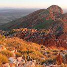 Mt. Sonder by Steven Pearce