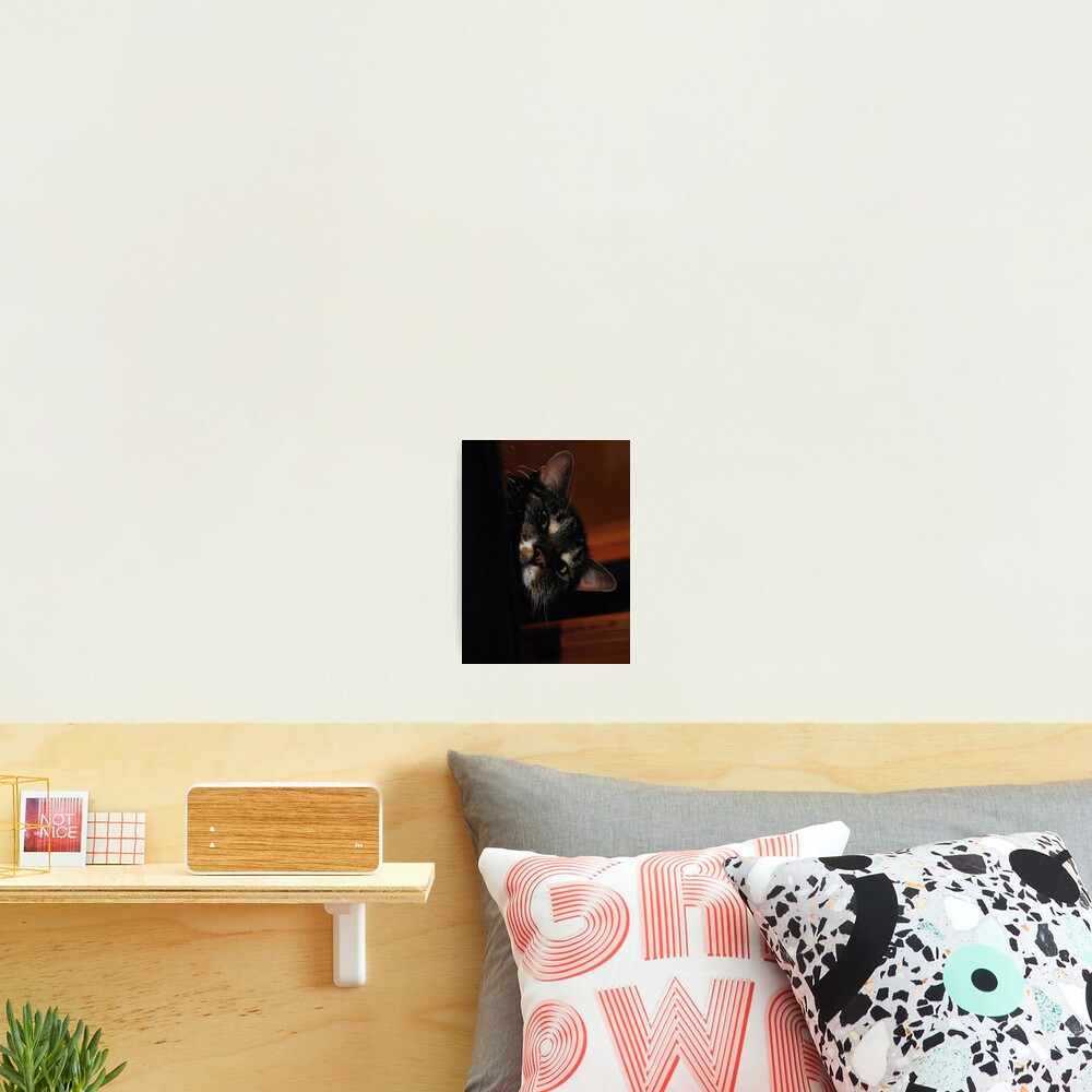 'Ello.. Photographic Print