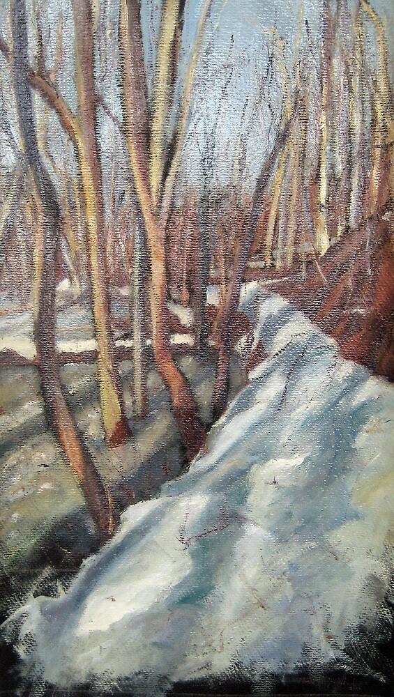 Snowy Trail at Rock Creek Park by Marcie Wolf-Hubbard