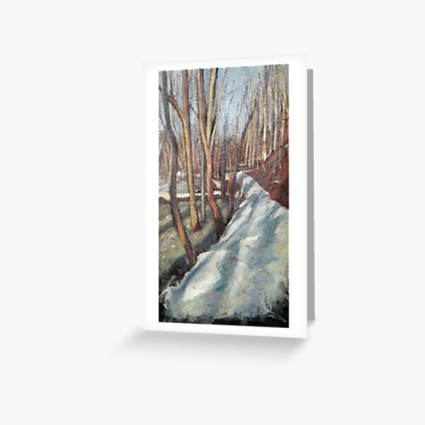 Snowy Trail at Rock Creek Park Greeting Card