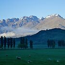 Early morning, Remarkables, Queenstown, NZ. by johnrf