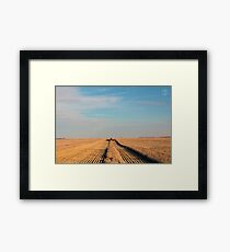 Swathing Straight Ahead Framed Print