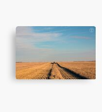 Swathing Straight Ahead Canvas Print