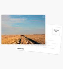 Swathing Straight Ahead Postcards