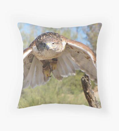 Ferruginous Hawk ~ Spot On! Throw Pillow