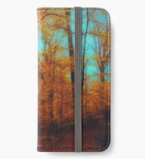 Colours Of Fall iPhone Wallet/Case/Skin