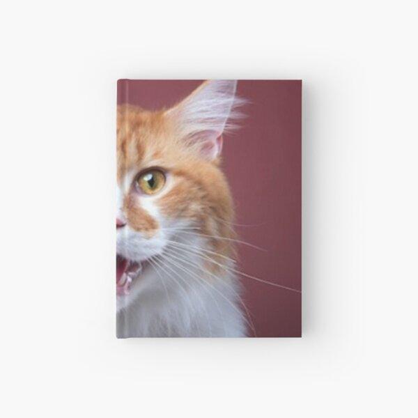 #Cat, #animal, #pet, #cute, kitten, background, white, mammal, feline, domestic, fur, nature Hardcover Journal