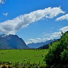 Morning view , South Island, New Zealand,  by johnrf