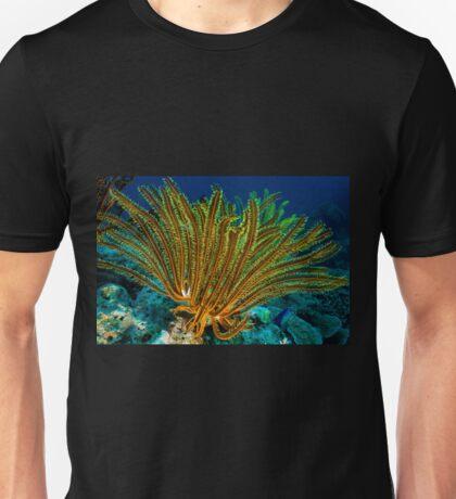 Feather Star, Kimbe Bay, Papua New Guinea T-Shirt