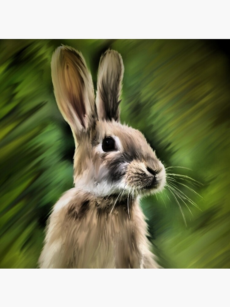Rabbit  by H4WK