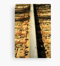 Forgotten railroad tracks Canvas Print