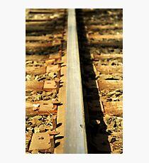 Forgotten railroad tracks Photographic Print