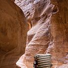 Canyon Carriage by Scott Carr