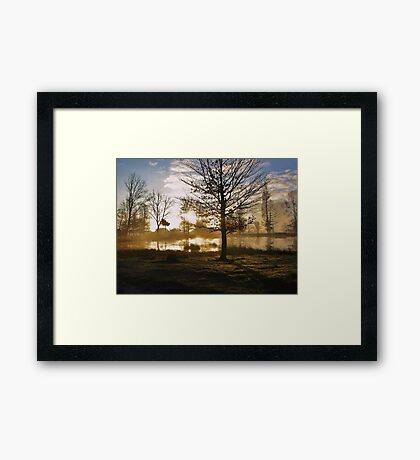 Sunrise and Tree Shadows Framed Print