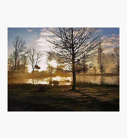 Sunrise and Tree Shadows Photographic Print