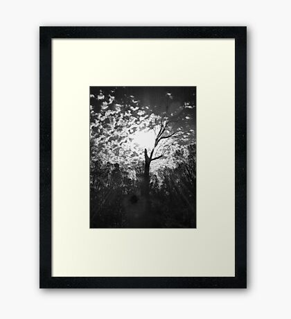 A Tree Framed Print