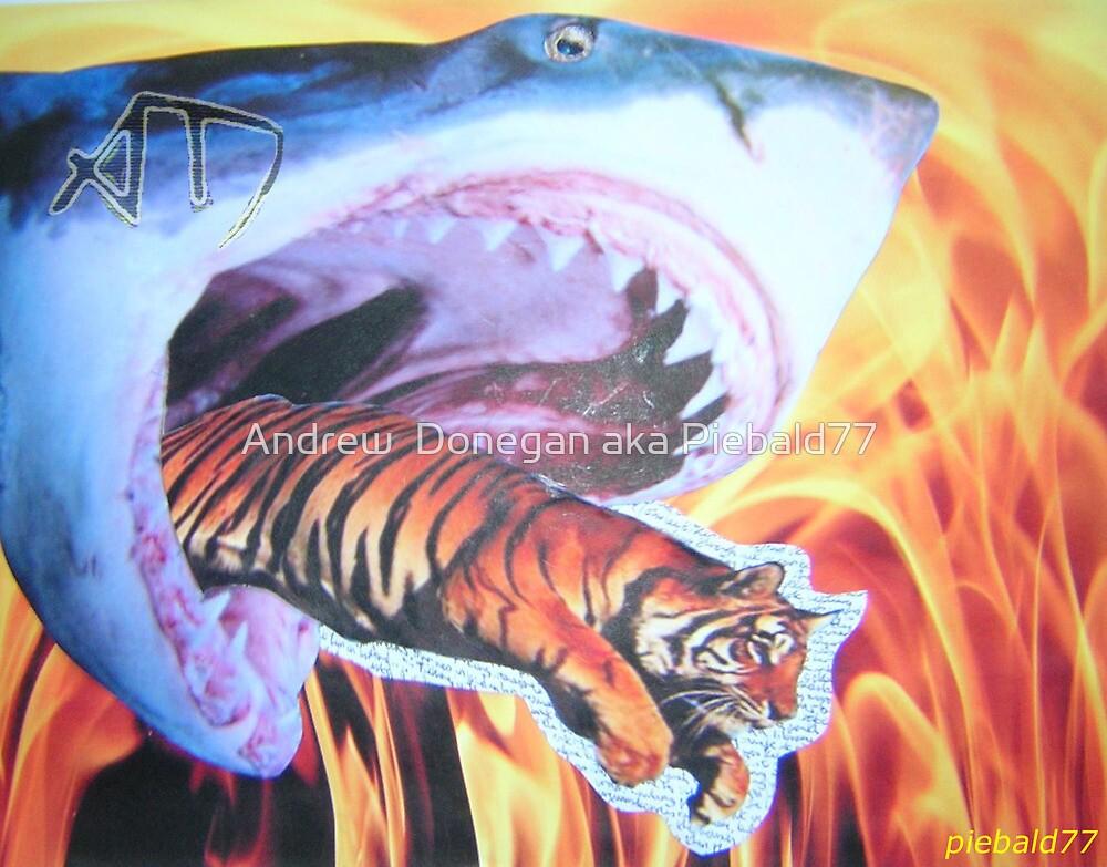 Tiger Shark by Andrew  Donegan aka Piebald77
