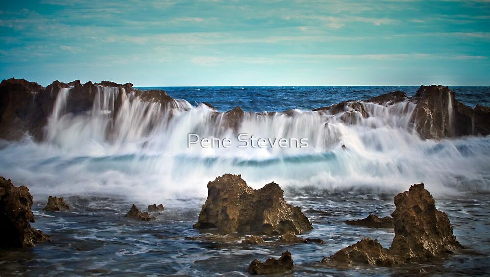 Low Tide @ Lucy's Beach by Pene Stevens