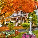 Autumn - Westfield, NJ - The Beauty of Autumn by Michael Savad